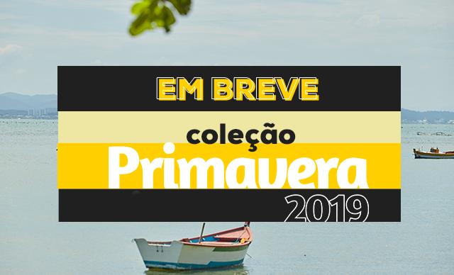 PV 2019